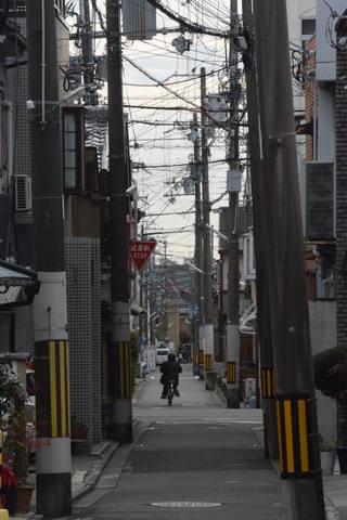kyoto1045s.jpg