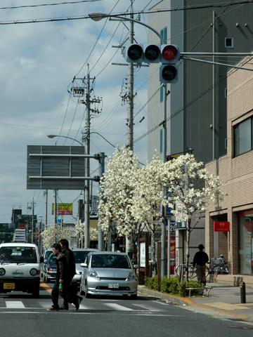 nagoya3795s.jpg